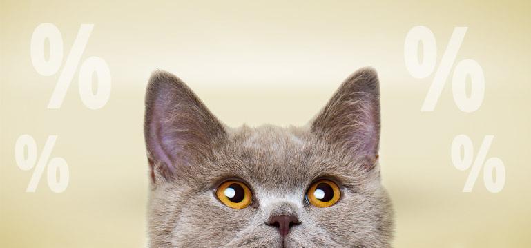 PremiumSales Katzennassfutter