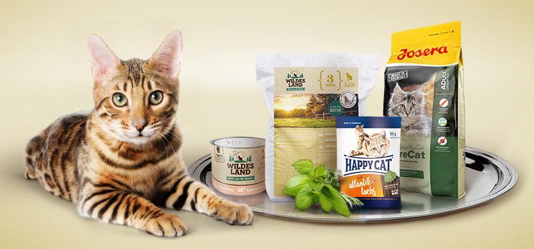 Probierwelt Katzenfutter