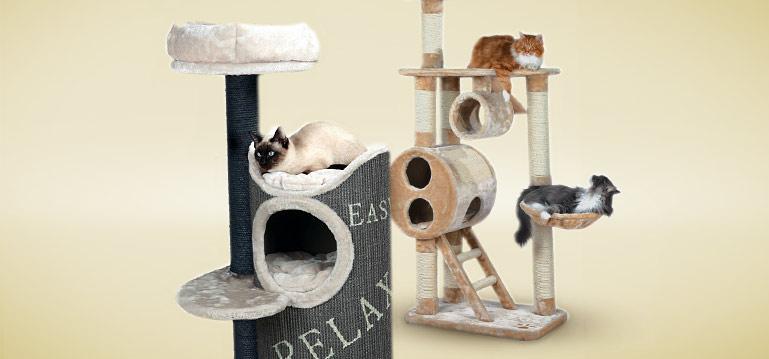 Kratzbäume Katze