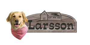 Larsson-Snacks Logo
