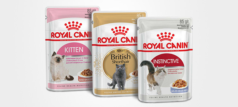 Royal Canin Nassfutter