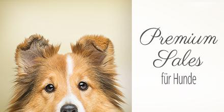 Sonderangebote Premium Sales für Hunde