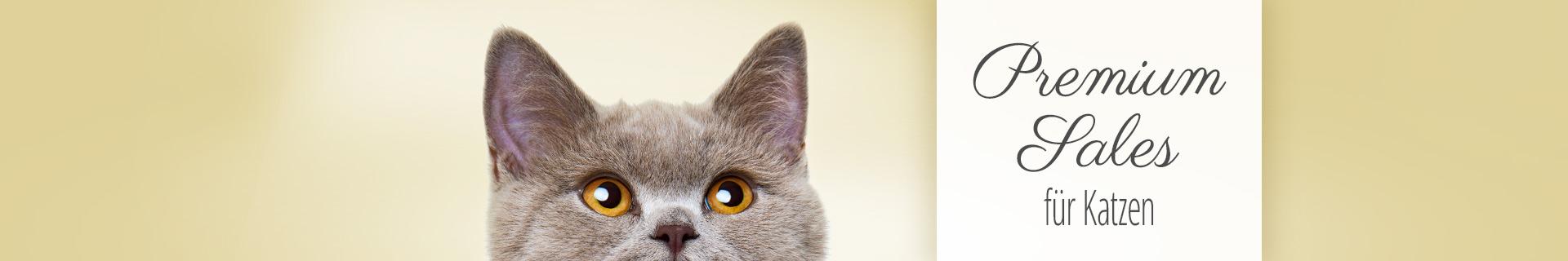 Sonderangebote Premium Sales für Katzen