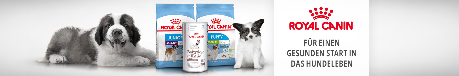 Royal Canin Hundefutter Puppy & Junior