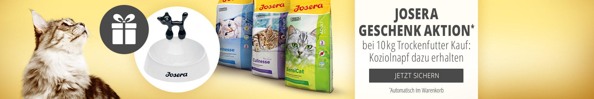 Josera 10kg Trockenfutter Katze + Koziol Katzennapf geschenkt