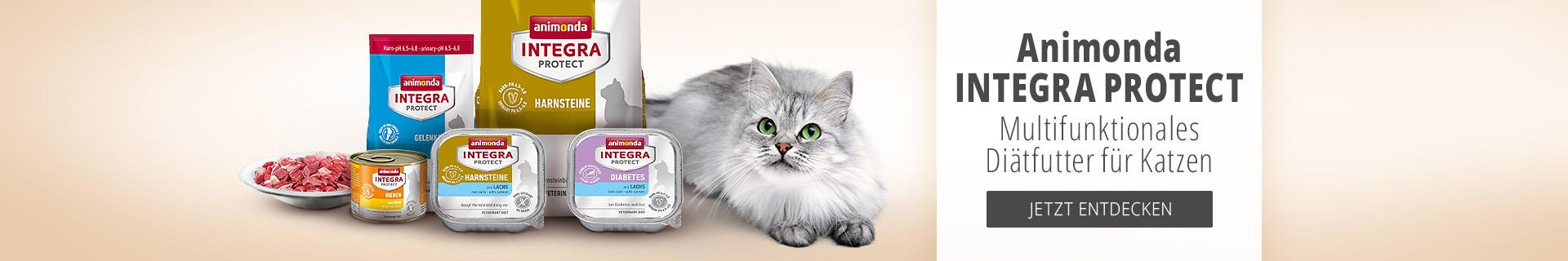 Medizinisches Ditätfutter für Katzen