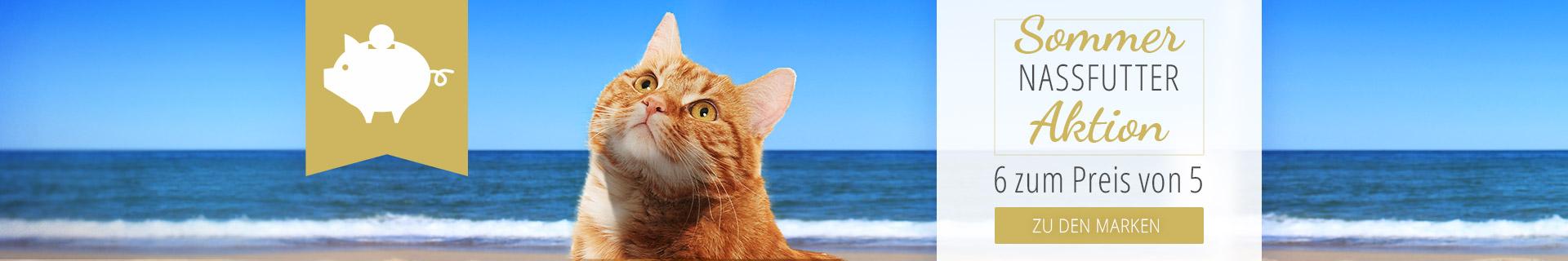 Nassfutter Aktion für Katzen - 6 für 5