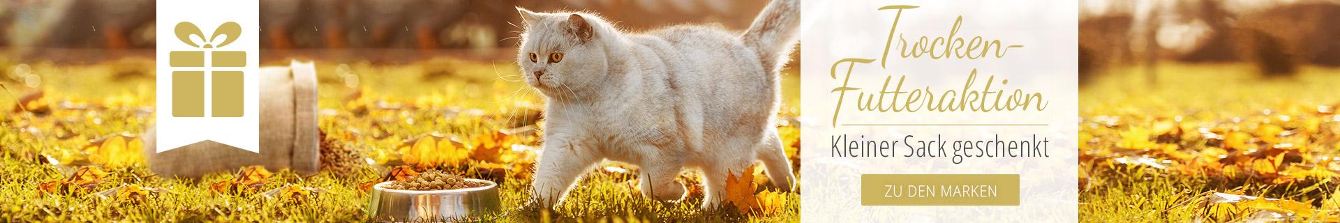 Trockenfutter Aktion für Katzen - Kleiner Sack geschenkt