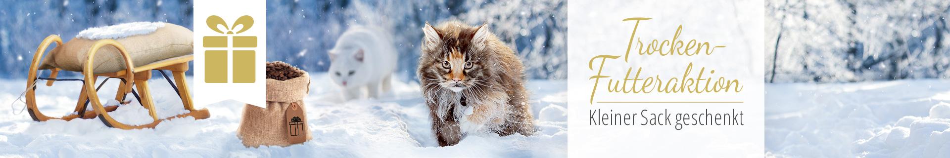 Kleiner Sack Gratis Aktion Katze