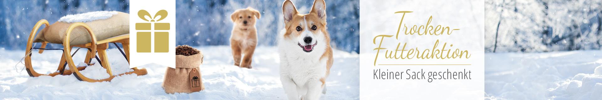 Kleiner Sack Gratis Aktion Hund