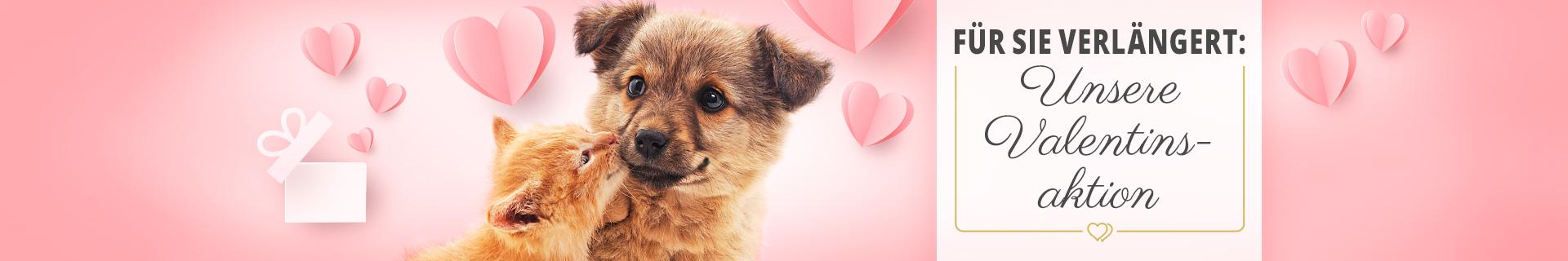 Valentinstagsaktion - 14% Rabatt auf ausgewählte Artikel