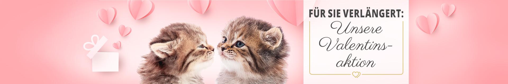 Valentinstagsaktion für Katzen - 14% Rabatt auf ausgewählte Artikel