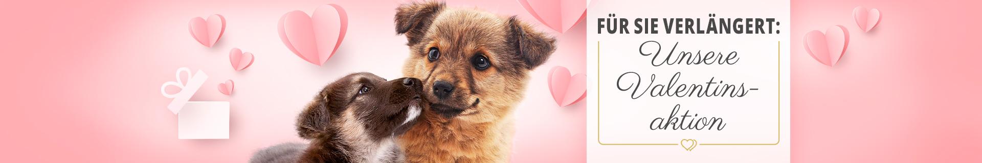 Valentinstagsaktion für Hunde - 14% Rabatt auf ausgewählte Artikel