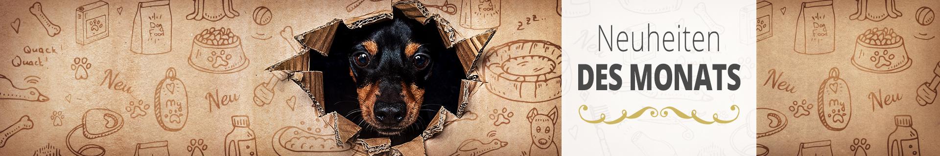 Neuheiten für Hunde