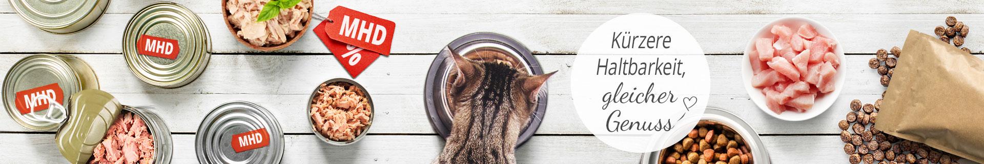 Rabatt Aktion Katze